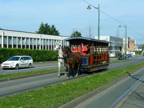24/03/2019 - photo tramway hippomobile 509 à Bruxelles - Belgique