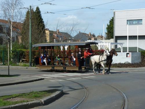 24/03/2019 - photo tramway hippomobile 509 à Bruxelles - Belgique